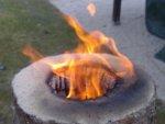 Wypalanie pnia